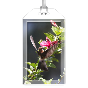 Giant Hummingbird Luggage Tags - Set of 2