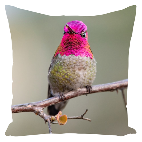 Anna's Hummingbird Throw Pillows
