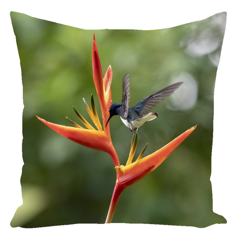 Hummingbird on Heliconia Flower Throw Pillows