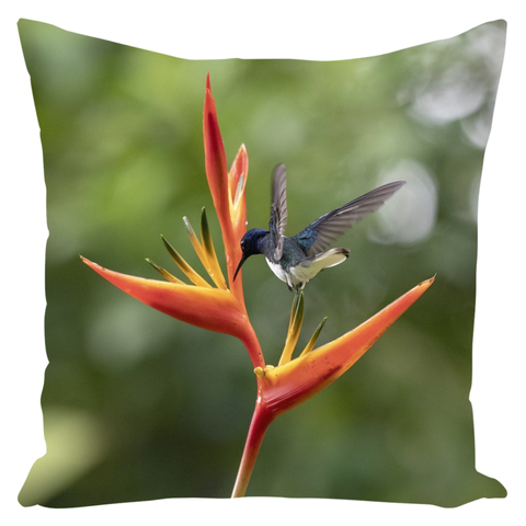 Image of Hummingbird on Heliconia Flower Throw Pillows