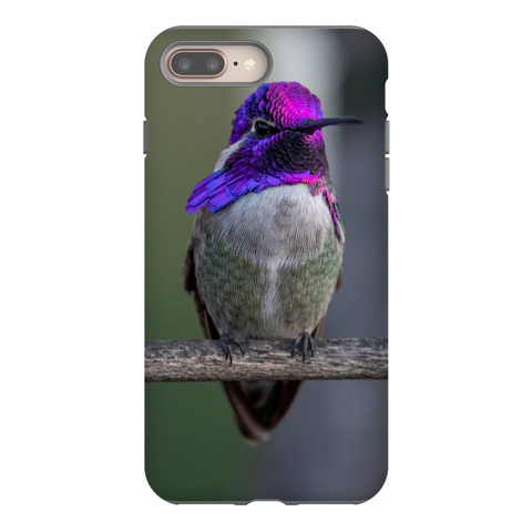 Costa's Hummingbird Phone Case for iPhone