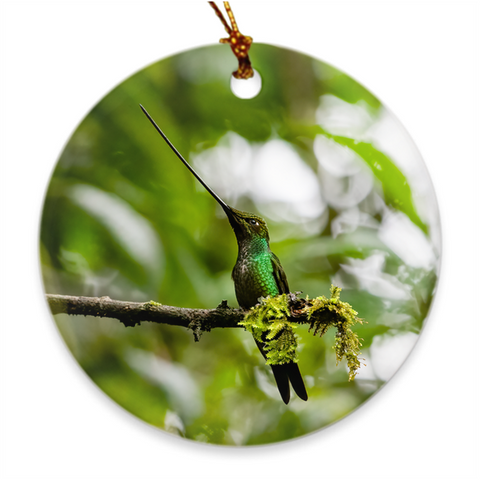 Sword-billed Hummingbird Porcelain Ornament