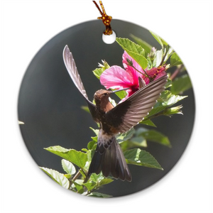 Giant Hummingbird Porcelain Ornament