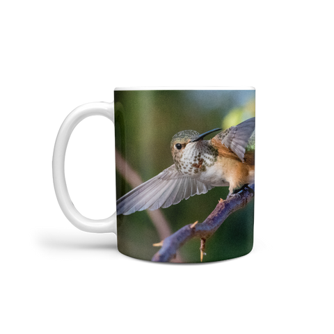 Image of Allen's Hummingbird Coffee Mug