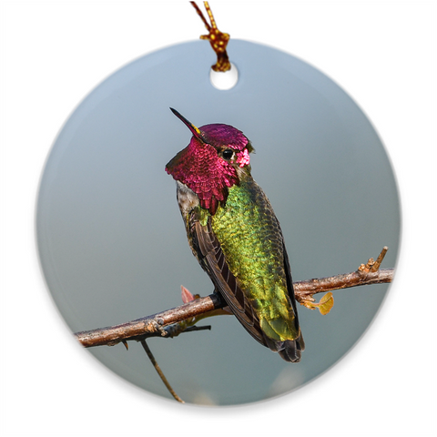 Image of Anna's Hummingbird Porcelain Ornament