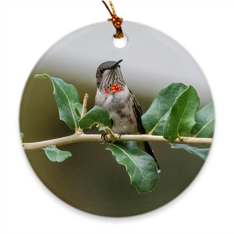 Ruby-throated Hummingbird Porcelain Ornament