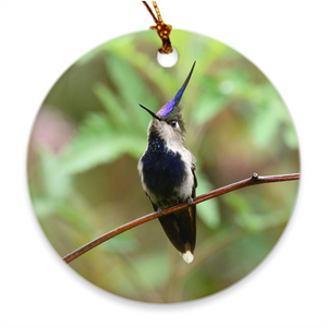 Purple-crowned Plovercrest Hummingbird Porcelain Ornament