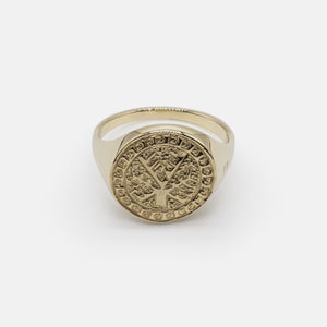 Crann Solid Gold - Carbon Negative Signet Ring