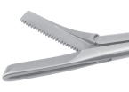 Struycken Turbinate Forceps