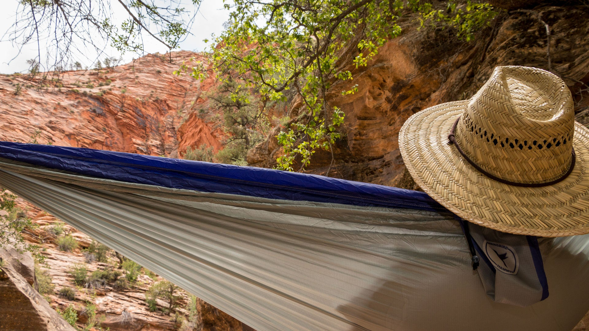 Double Hammock Deep Purple In Canyon
