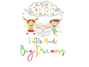 Little Mindz Big Dreams