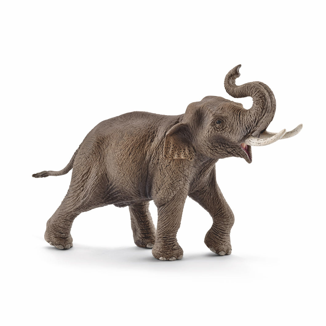 Schleich Asian Elephant Male
