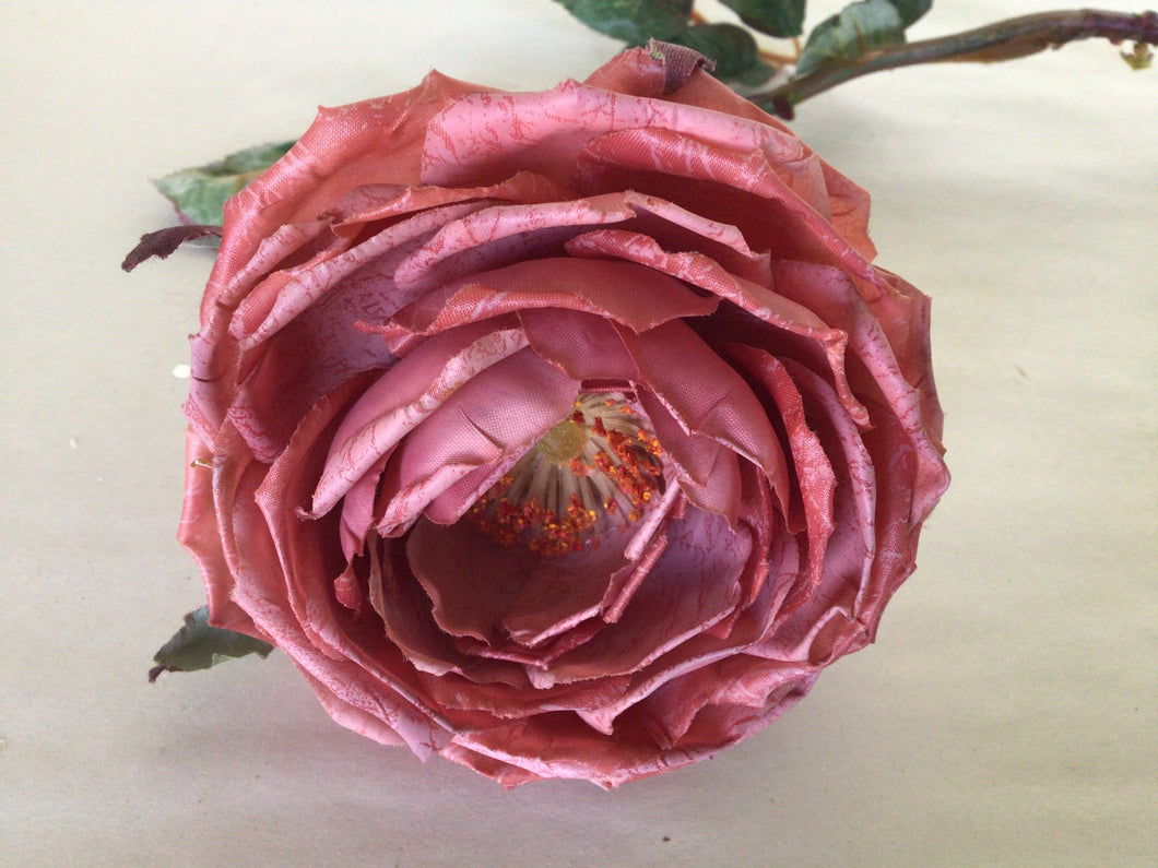 "Cabbage Rose Stem - 3.5""w x 27""h - Dusty Rose"