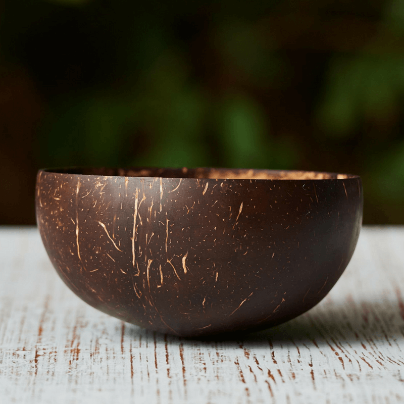 Reusable Coconut Bowl