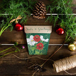 Sow_n_Sow_Seeds_n_Greetings_Gift_of_Seeds