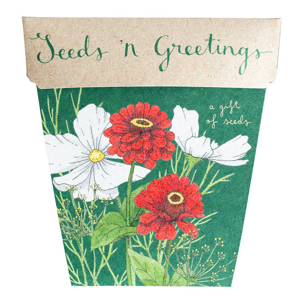 Sow n Sow Seeds n' Greetings Gift of Seeds