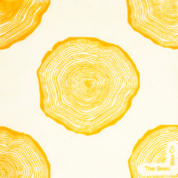 Reusable Beeswax Food Wraps Sprial Medium