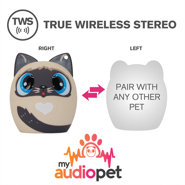 PURRfect Pitch the Cat Speaker Only