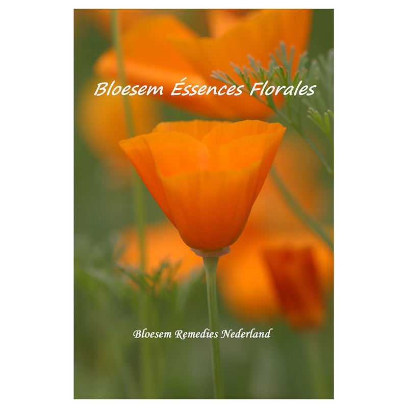 Brochure Bloesem Éssences Florales - Traduction française