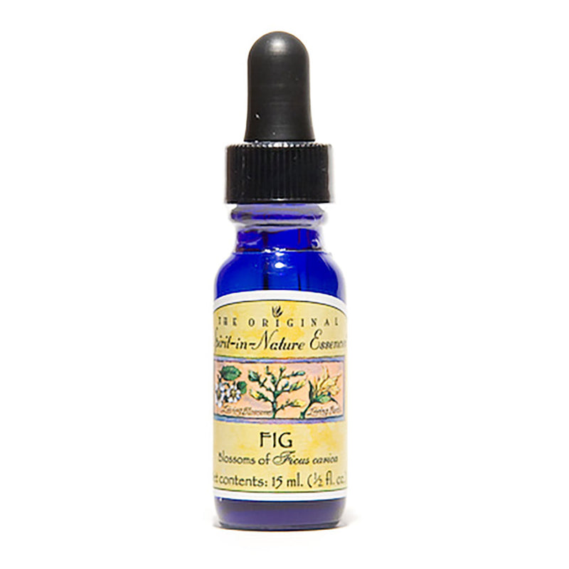 "Fig Flower Essence for Children - ""Flexibility"""