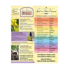 Spirit-in-Nature Cardstock Flyer - for People