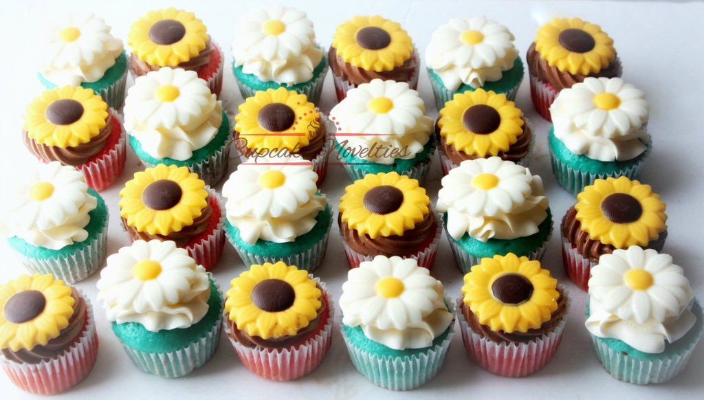 Groovy Cowgirl Birthday Party Spring Cupcakes Rustic Sunflower Cupcakes Personalised Birthday Cards Sponlily Jamesorg