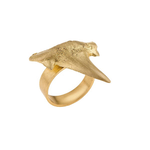 Ring from Fossil collection - FOP28-2