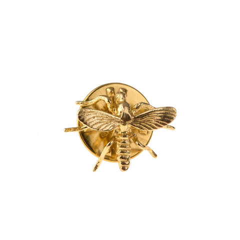 Pin from Insects collection - IB10-2
