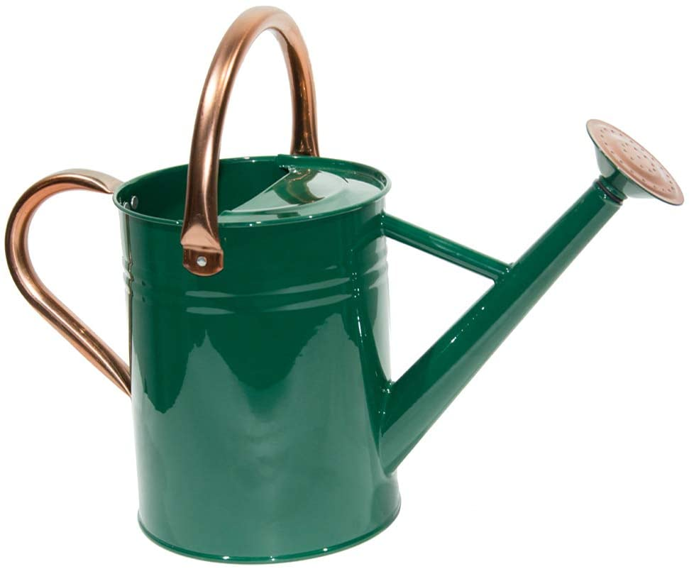 Watering Can Galvanized Steel Metal Pot