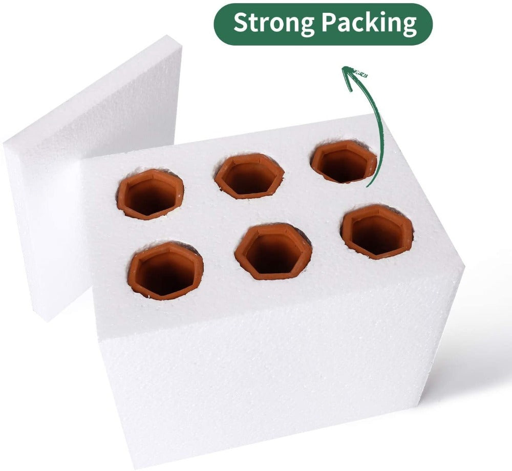 Terracotta Plant Watering Stakes