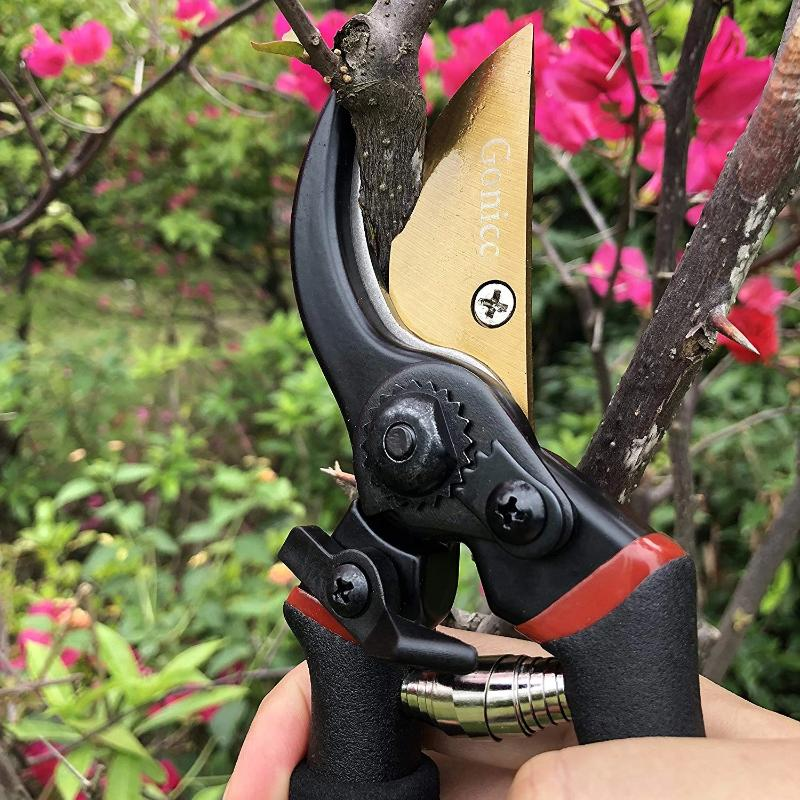 Premium Titanium Pruning Shears
