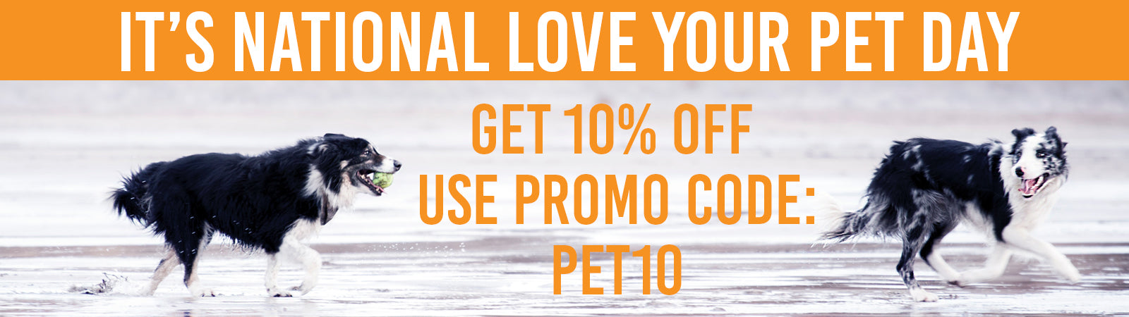10% Off Use Code PET10
