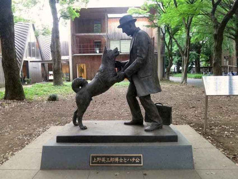 Hachi reunited with his master Ueno. Image Courtesy: Amusing Planet