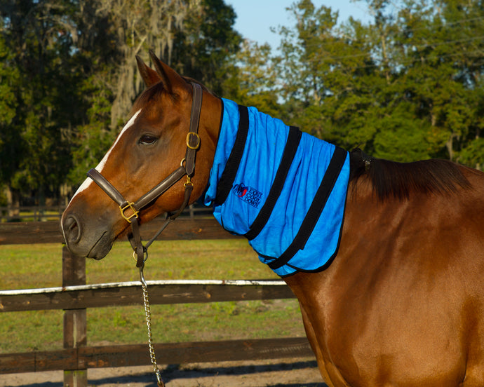 Equi Cool Down Neck Wrap