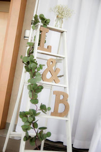 Vintage white wood ladder