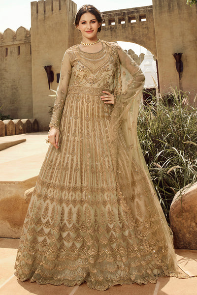 Net Embroidered Dress Material in Beige