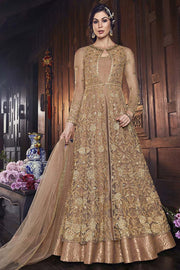 Net Embroidered Salwar Kameez in Beige
