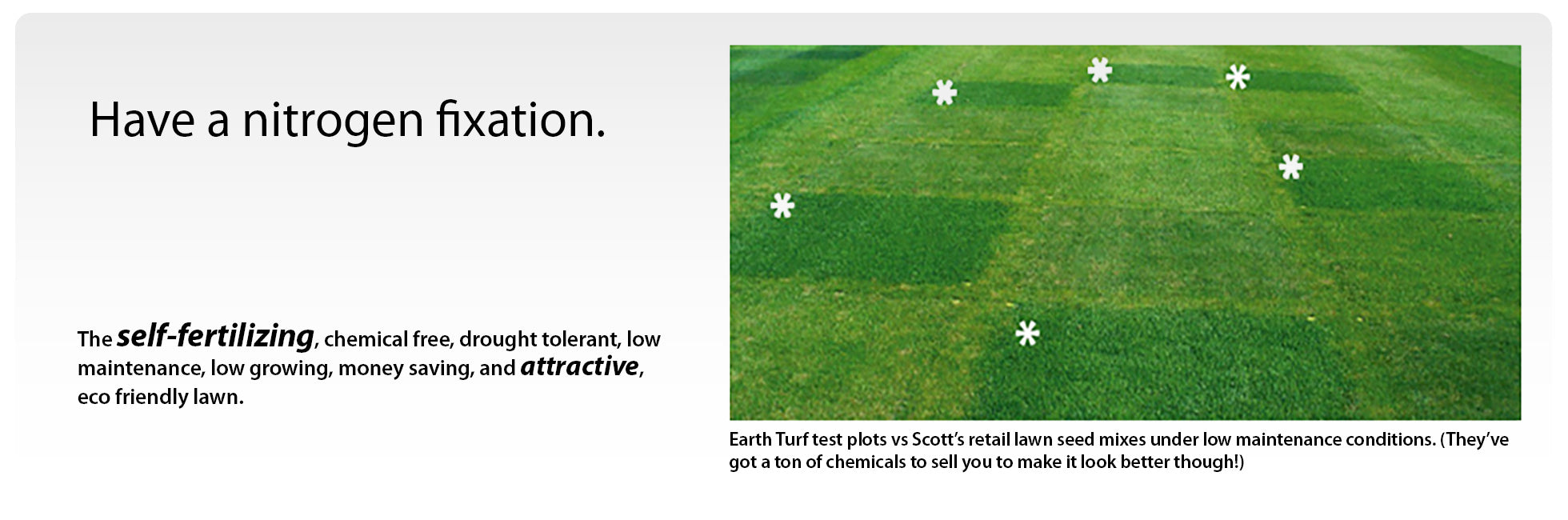 Earth Turf Welcome Banner