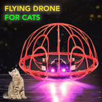 Flying Drone For Cats