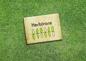 "Vegan Vegetarian Fridge Magnet ""Herbivore"" Tan 2.5x3.5"