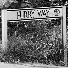 Coaster - Furry Way
