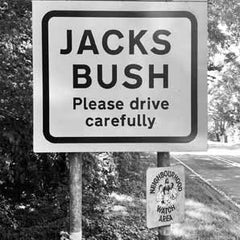 Coaster - Jacks Bush