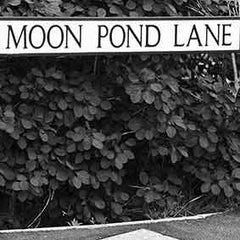Coaster - inspired by Terry Pratchett's Discworld - Moon Pond Lane