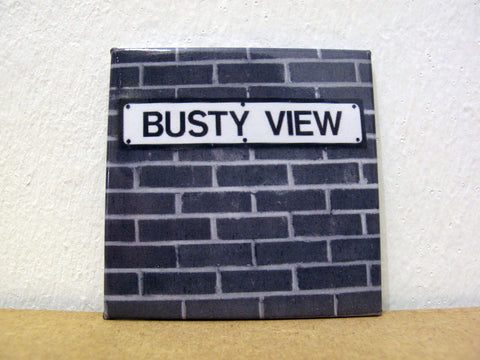 BUSTY VIEW - Fridge Magnet