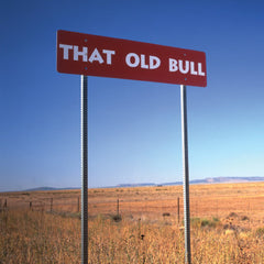 Old Bull, USA - Greeting Card