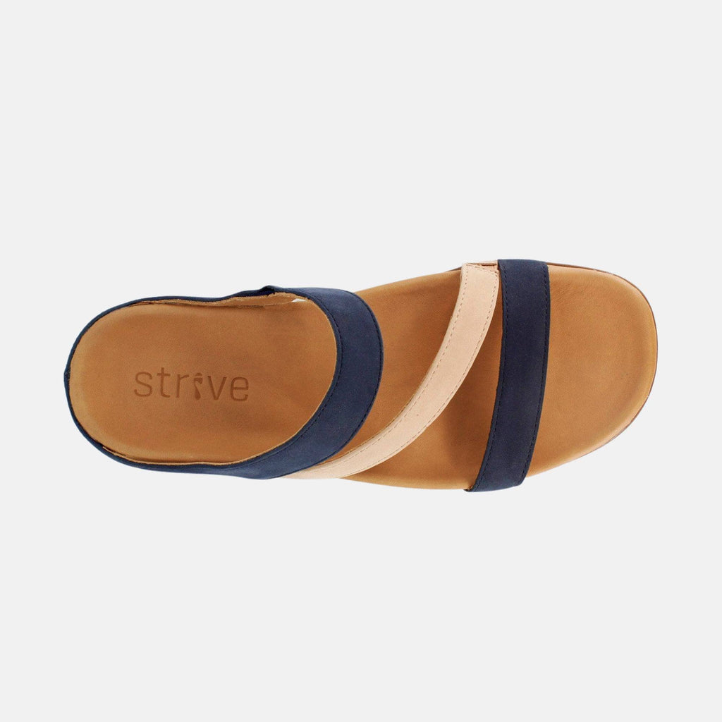 Strive Footwear Trio 17180BR Navy/Roebuck