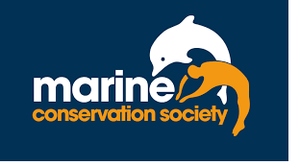 The Marine Conservation Society - our chosen Partner