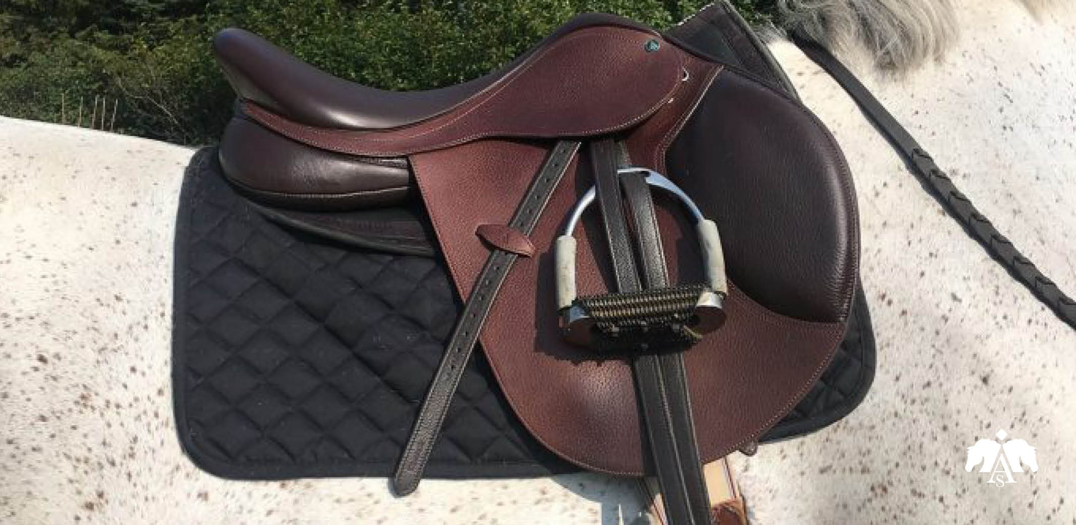 Product review: Arena Saddles - Exceptional Quality on an Acceptable Budget