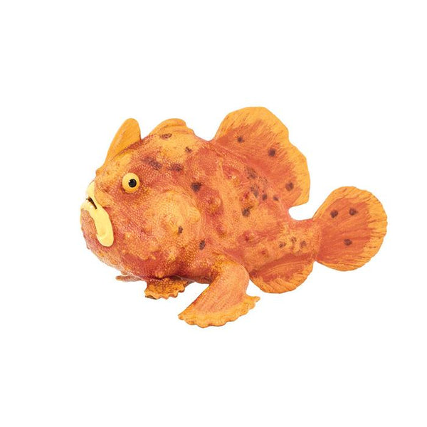 FROGFISH | NEW