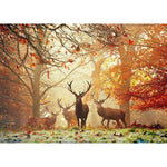 1000pc Heye Puzzle Stags, Magic Forest
